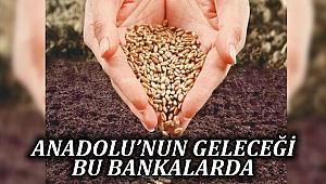 Anadolu'nun Geleceği Bu Bankalarda